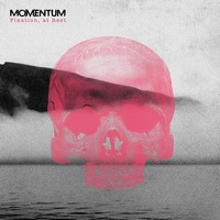 Momentum - Fixation, At Rest