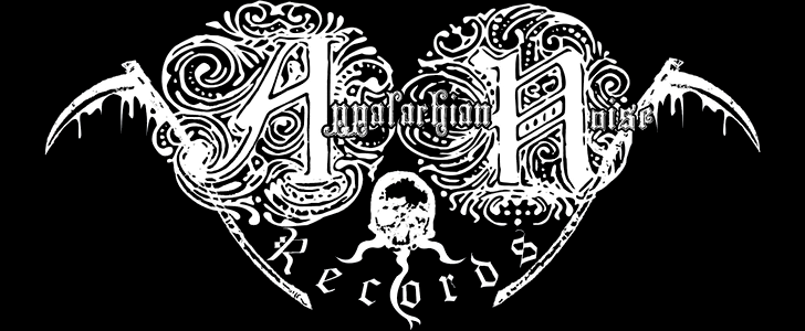 Appalachian Noise Records